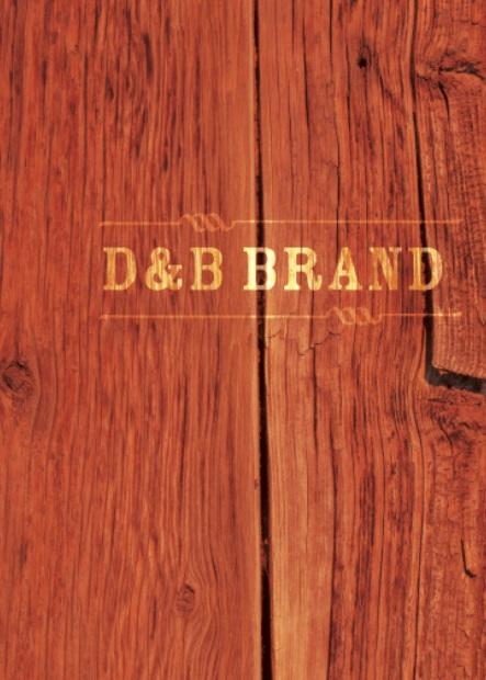 DPS2923_Brandbook13